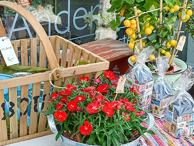 Karsten Andersen Bolig og blomster